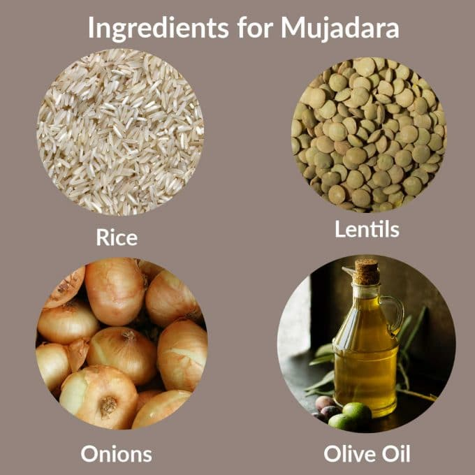 Labeled Circle images of the ingredients to make mujadara. Lentils, rice, onions and olive oil
