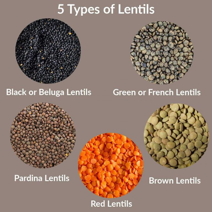 An image that show 5 different types of lentils. Each type of lentil, black, green, pardon, red and brown are labeled