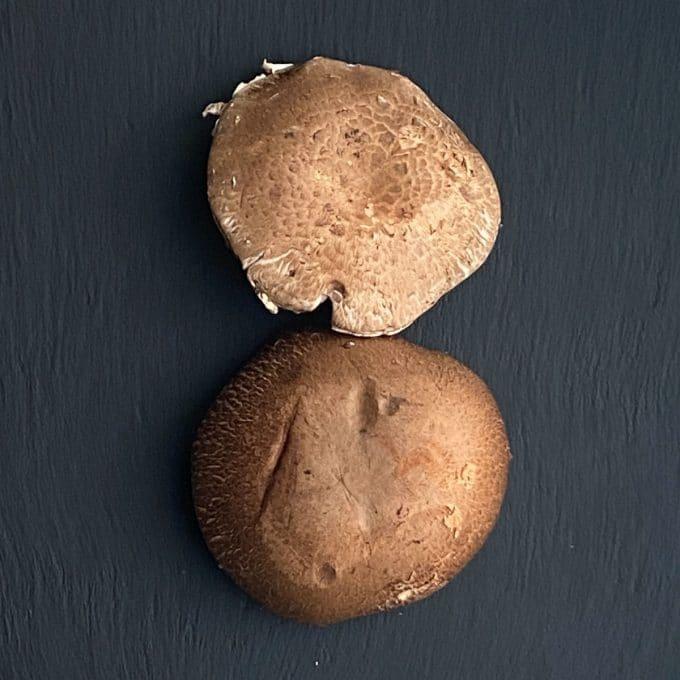two portabella mushrooms caps