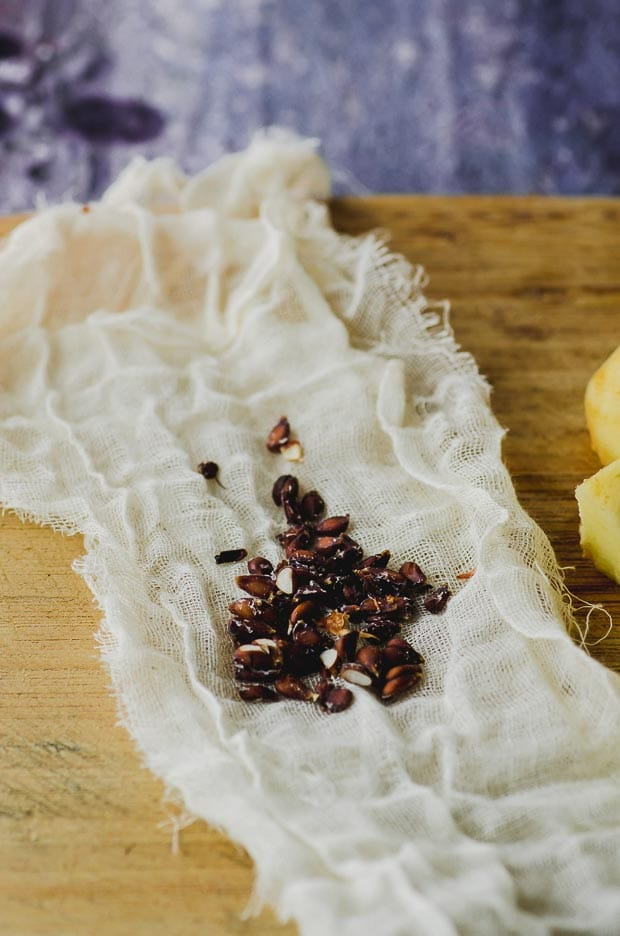 Seeds from a quince remove and placed on top of a cheesecloth to thicken a membrillo, Quince paste.