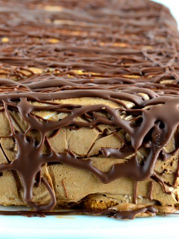 Frozen Mocha Cake - Easy and quick to make and super delicious. #Vegan #glutenFree #kosher #dairyFree #chocolate #coffee #soDelicious