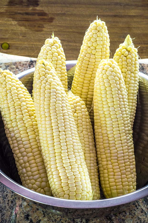7 ears of corn in a stainless steel bowl