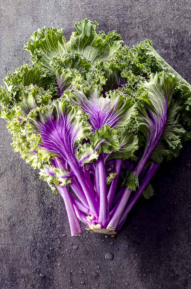 One bunch of purple kale on a black surface