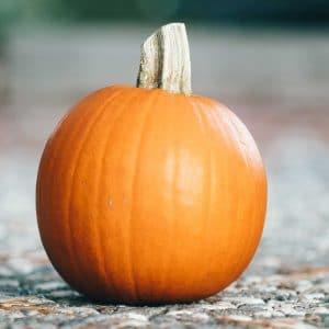 Sugar baby pumpkin