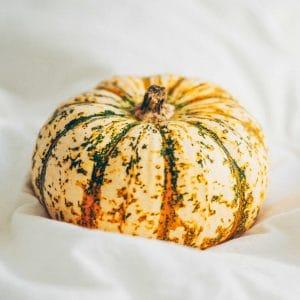 Hakai pumpkin