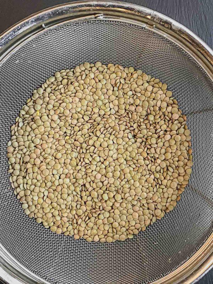 Brown Lentils in metal mesh colander
