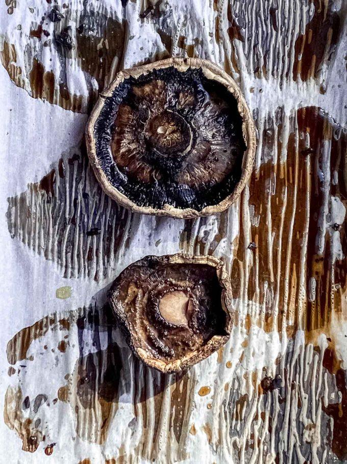 Extra-large portobello mushroom cap vs a regular large one